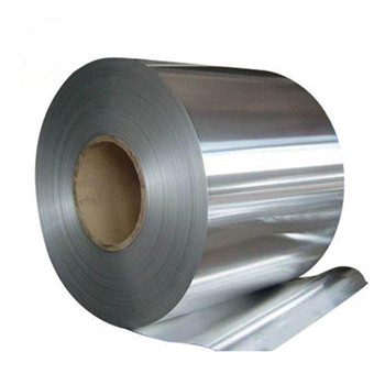 ASTM/AISI 310S Cold Rolled Stainless Steel Coil in Good Price