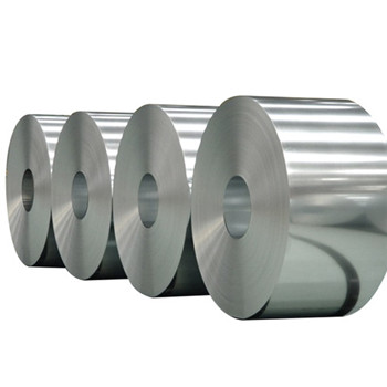 Manufacturers Can Provide Customized Service Stainless Steel Coil (201 304 316L 410 430)