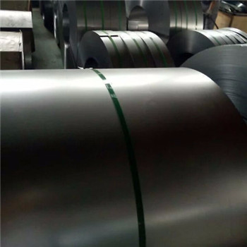 Excellent Quality Stainless Steel Coil (201 304 321 316 316L 310S 904L) with Stock